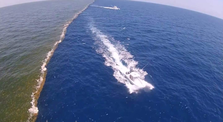 рады представить два океана которые не сливаются фото данный момент ольга